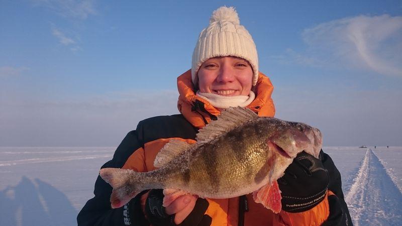 Рыбалка рыбинском водохранилище зимой