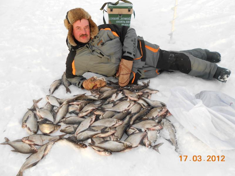 Где клюет на рыбинском водохранилище сегодня