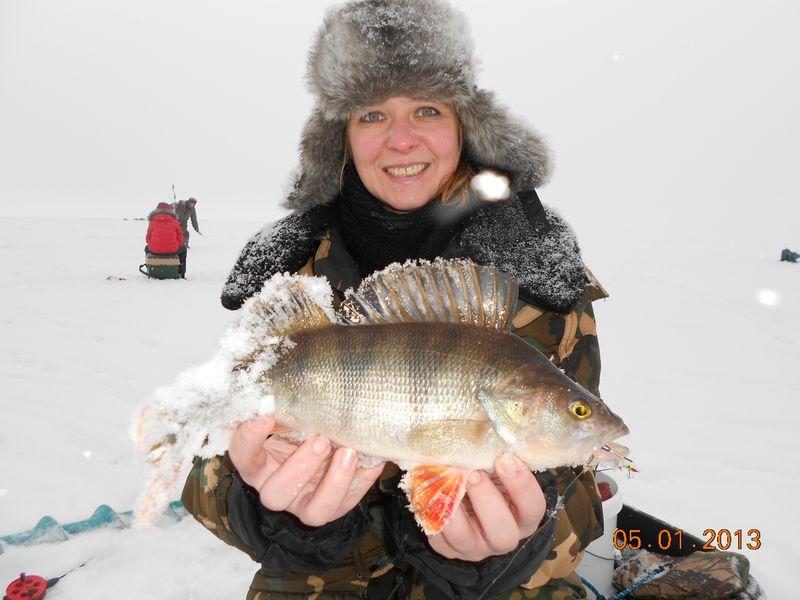 Отзывы о рыбалке на рыбинке