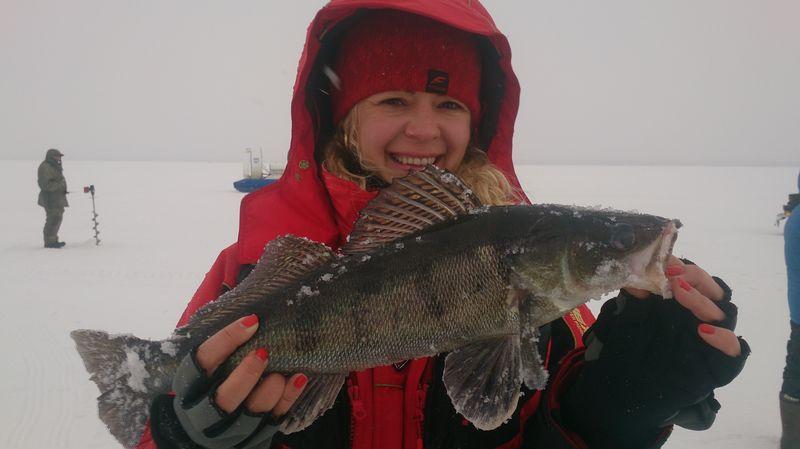 рыболовные точки рыбинского водохранилища