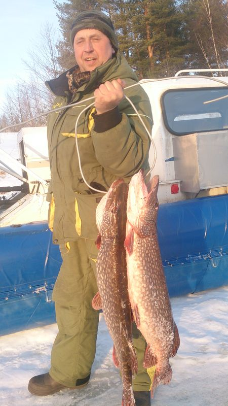 рыбалка на чеснаве 2016