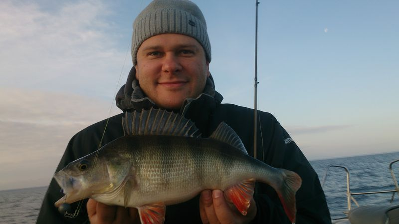 Рыбалка на рыбинском водохранилище это