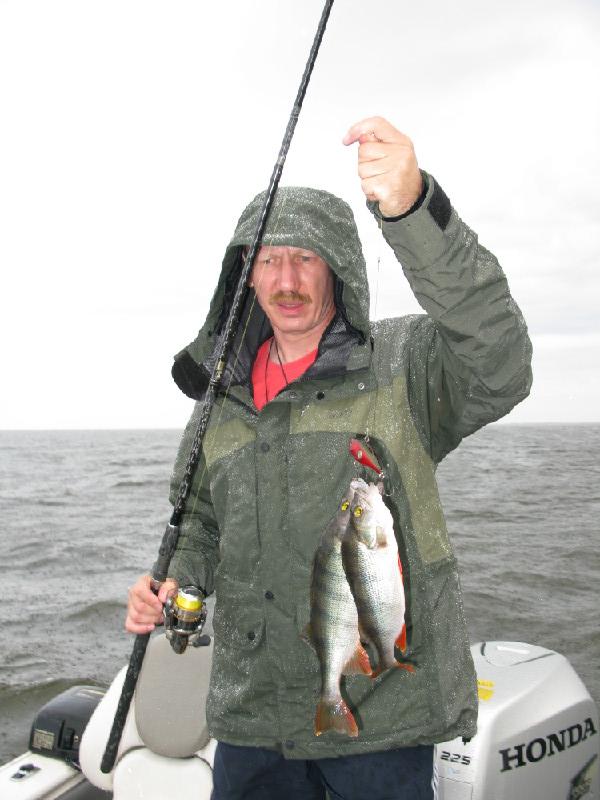 рыболовная база чеснава рыбинка