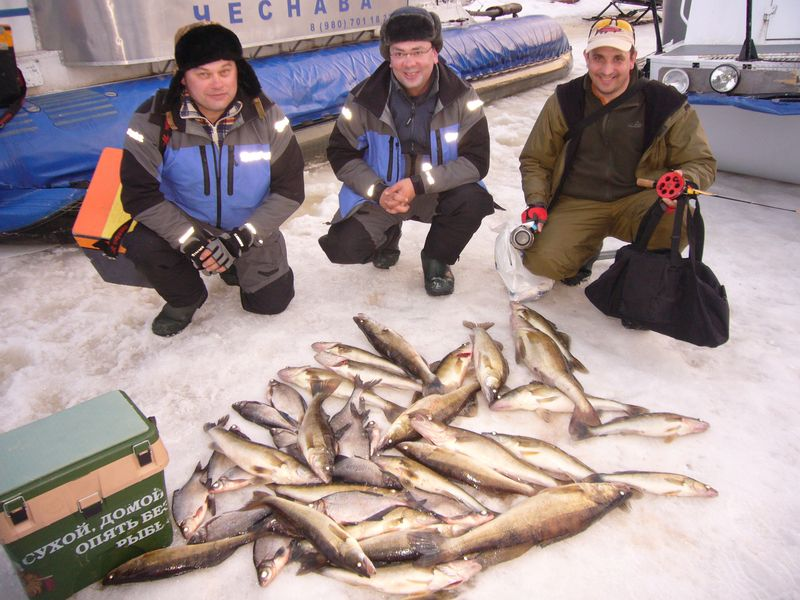Отчёты о рыбалке на Рыбинском водохранилище